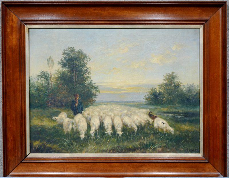 """""""Herder met schaapskudde"""". Olieverf op doek. Gesigneerd. Kleine beschadiging."""