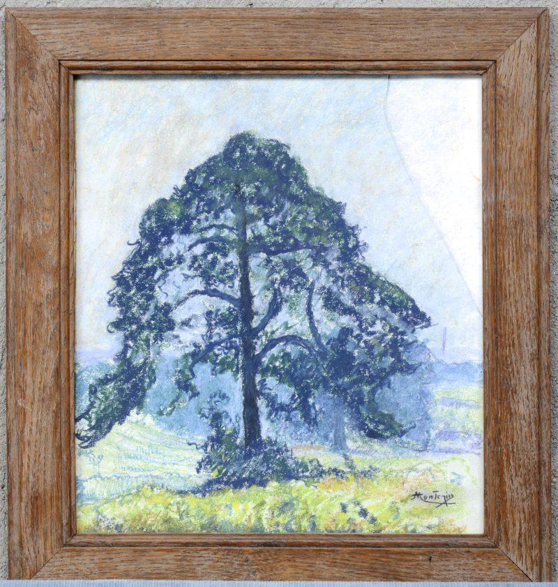 """""""Eenzame boom"""". Aquarel op papier. Glas gebroken."""