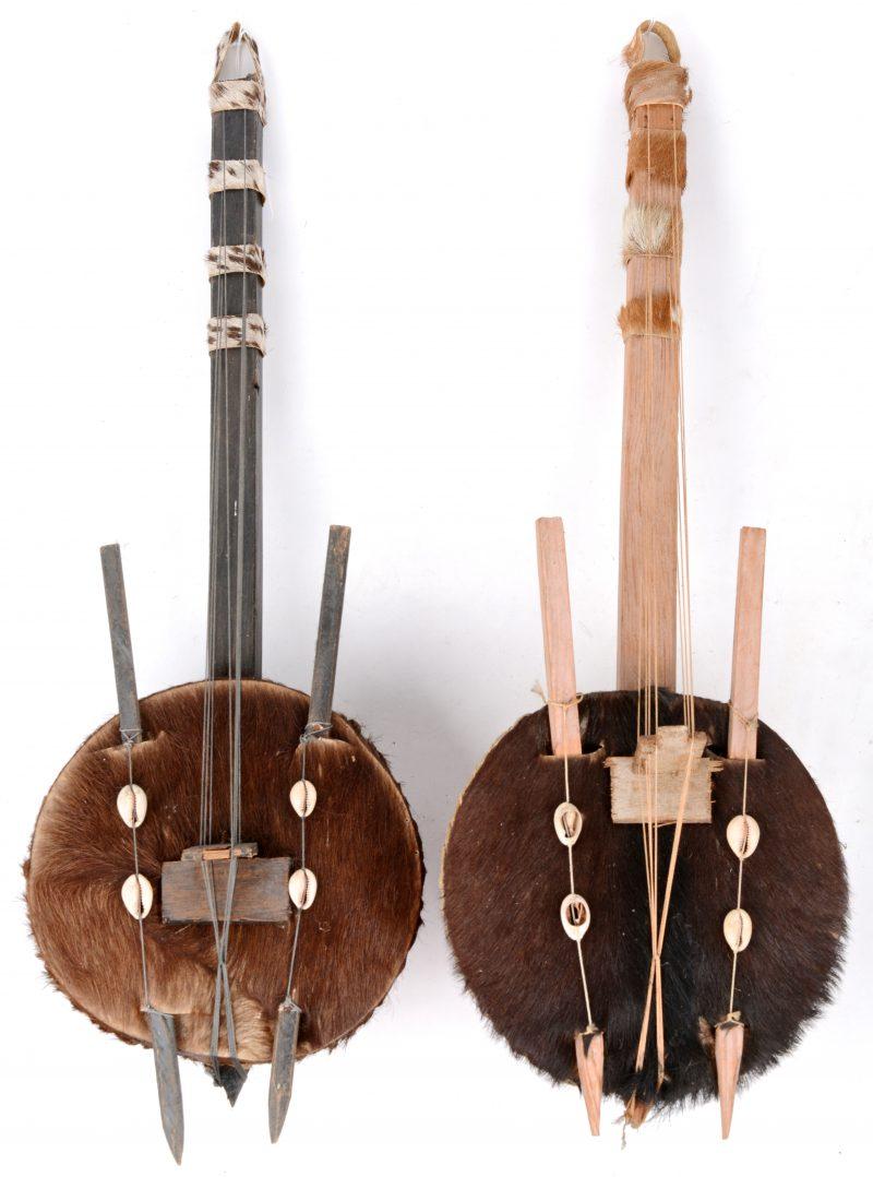 Een paar Nigeriaanse snaarinstrumenten, gemaakt van kalebassen met schelpjes en vacht.