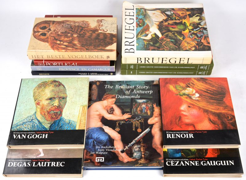 12 diverse boeken Kunst e.a.