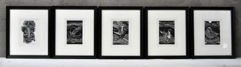 Vijf kleine litho's met betrekking tot zeevogels. Gesigneerd en genummerd buiten de plaat.