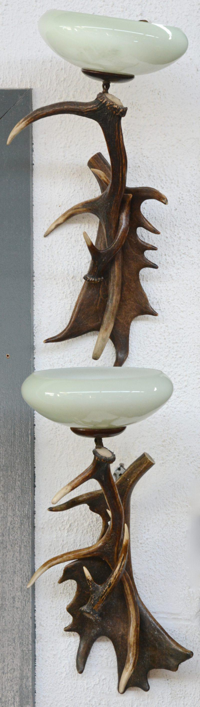 Een paar wandlampen van hoorn met glazen kappen.