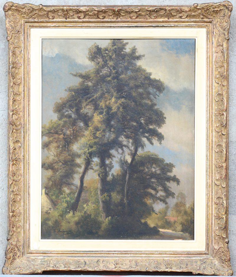 """""""Bomen"""". Olieverf  op paneel. Gesigneerd. Achteraan gedateerd 1819."""