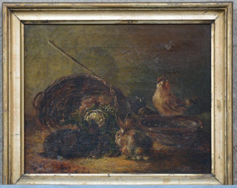 """""""Voorstelling met konijnen en een kip"""". Olieverf op doek. XIXe eeuw."""