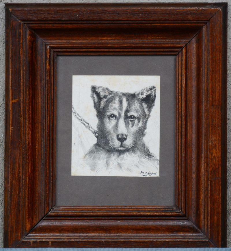 """Hond"". Potlood op papier. Gesigneerd en gedateerd 1907."