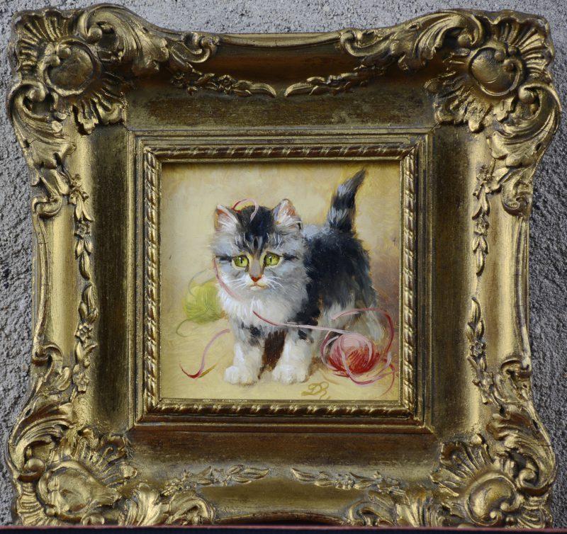 """Spelende kitten"". Olieverf op paneel. Gemonogrameerd 'R. D."