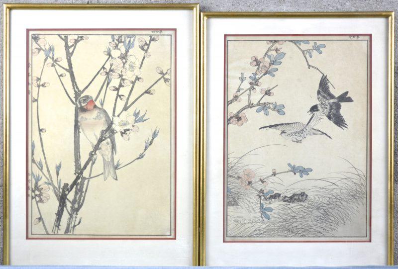 Twee ingekleurde Japanse houtsnedes met vogels en bloemen. Gesigneerd.