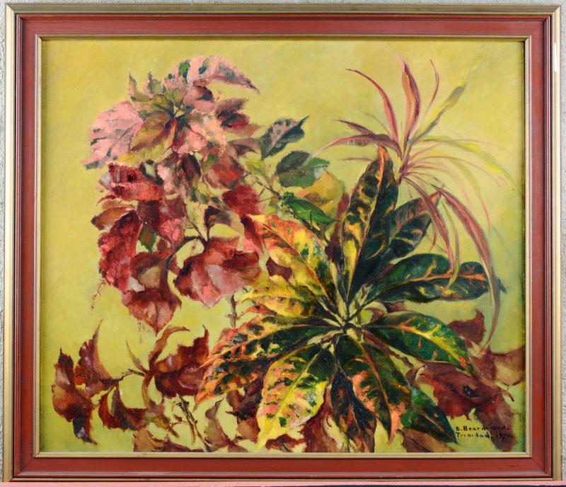 """""""Tropische plant met groene sprinkhaan"""". Olieverf op paneel. Gesigneerd en gedateerd Trinidad 1970."""