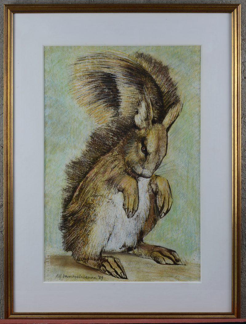 """Eekhoorn"". Pastel op papier. Gesigneerd en gedateerd 1989."