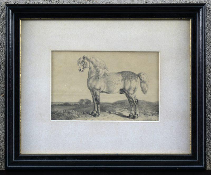 Een oude gravure van een paard.