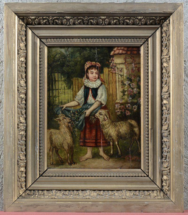 """""""Meisje met schapen"""". Olieverf op paneel. XIXe eeuw."""