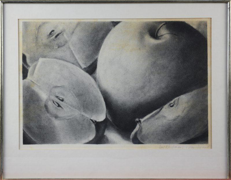 """""""Stilleven met appels"""". Houtskool op papier. Gesigeerd."""